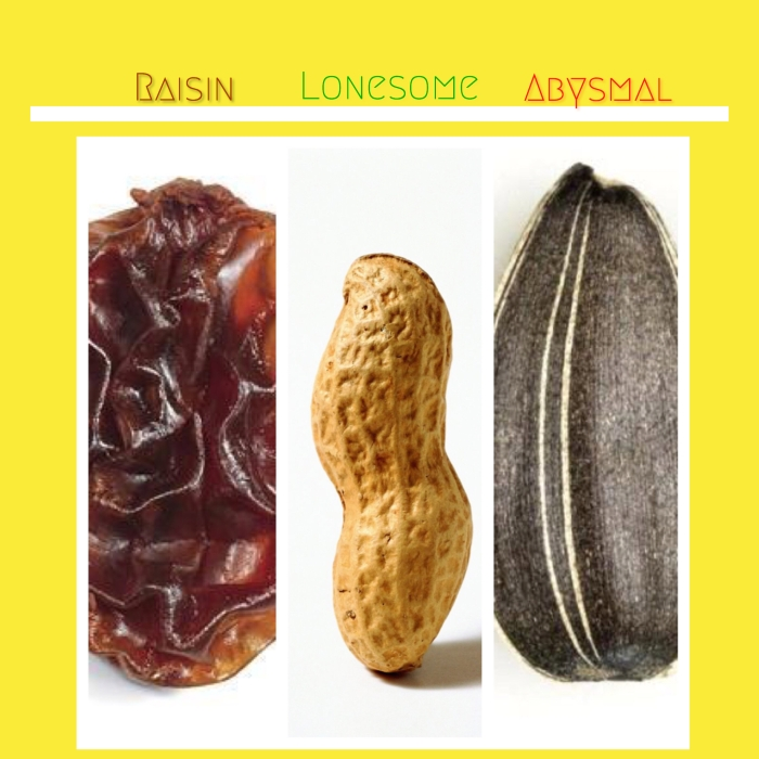 The Traveling Raisin, The Lonesome Peanut, and The Abysmal SunflowerSeed